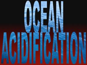 OCEAN-ACIDIFICATION